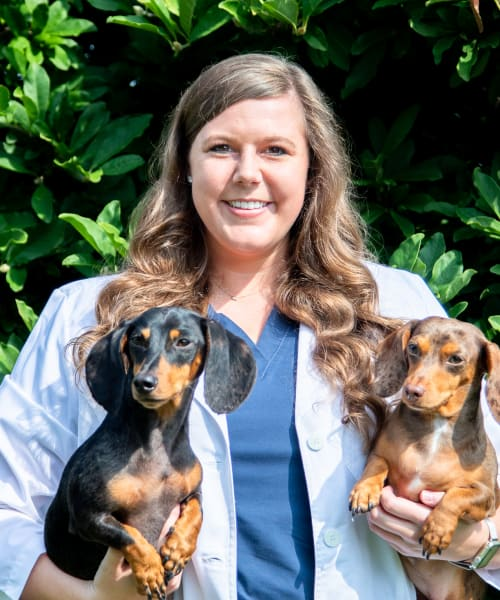 Dr. Alexandra Brown, North Memphis Vet at Stage Road Animal Hospital